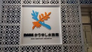 We visited the DMM Kariyushi Aquarium! Here it is with pictures and video!