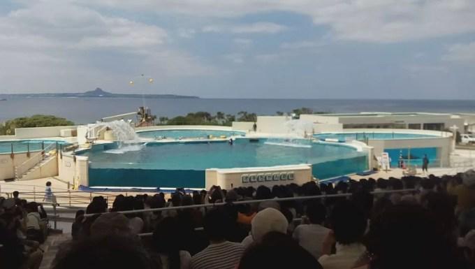 Ocean Expo Park's Dolphin Show Okichan Theater