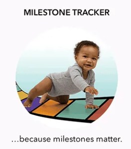 Milestone Moments Tracker