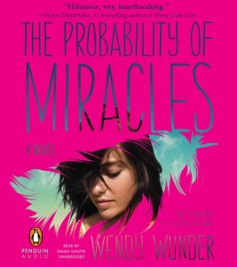 The Probability Of Miracles, Wendy Wunder, Pink. Audiobook Cover, Feather