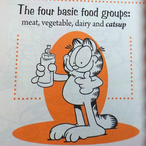 Garfield Recipes With Cattitude Goodeness Gracious