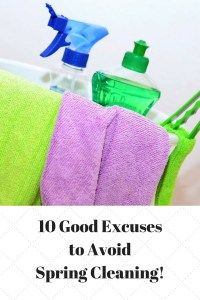 No one likes spring cleaning! Now you don't have to! 10 good reasons to avoid it altogether.