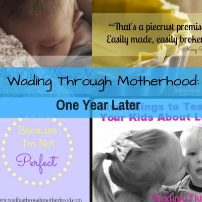 Wading Through Motherhood: One Year Later