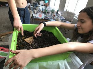 vermiculture for kids