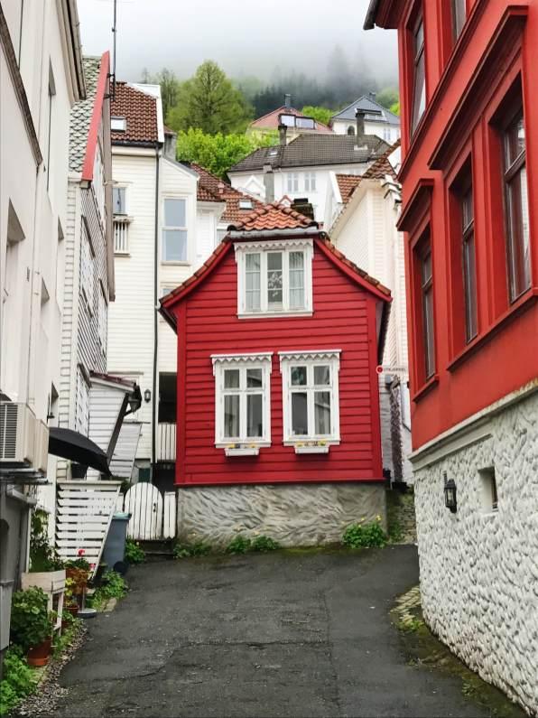 11 rood huis bergen