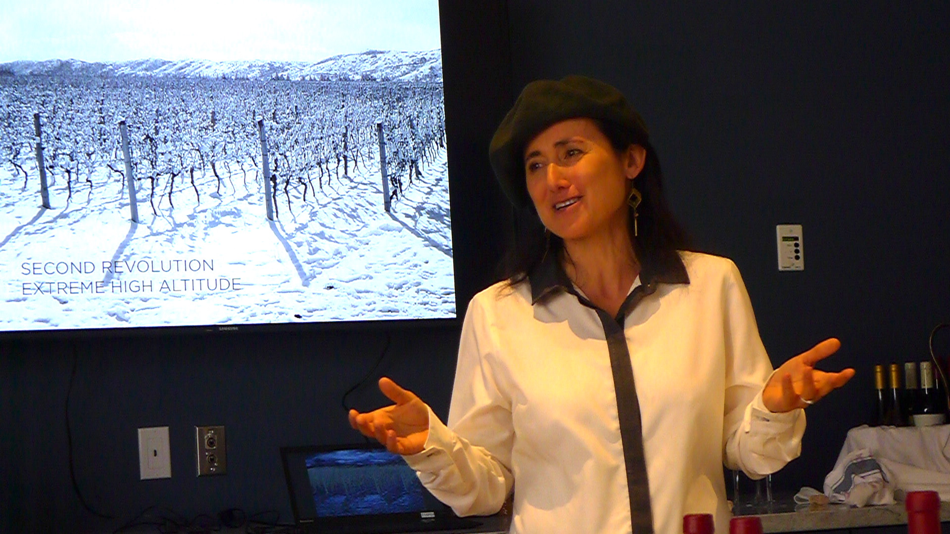 The irrepressible Laura Catena was in Toronto this week to speak about her family's history in Argentina and the three revolutions the wines have gone through at Bodega Catena Zapata.