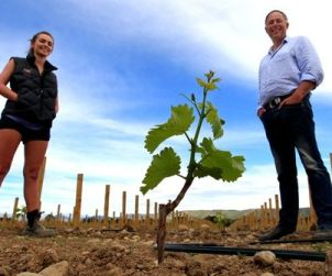 Emma and Brent Marris walk their vineyards at Marisco located in New Zealand's Waihopai Valley.