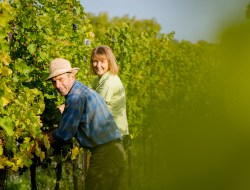 Susann Hanauer and Ralf Wassmann of Weingut Wassmann, Hungary, at home amongst their Villány vines.