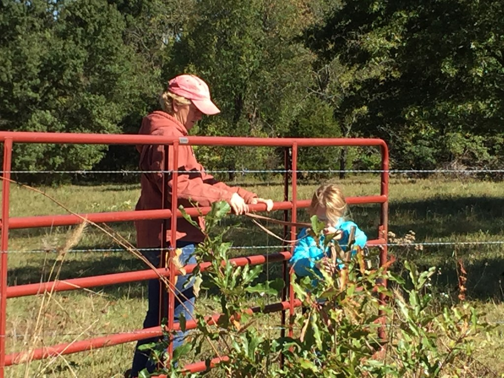 Learning to open a farm gate
