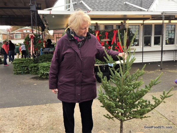 Jean Ted Drewes Christmas tree 2016