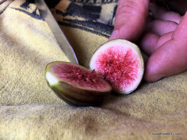 The Splendor of a Fresh Fig