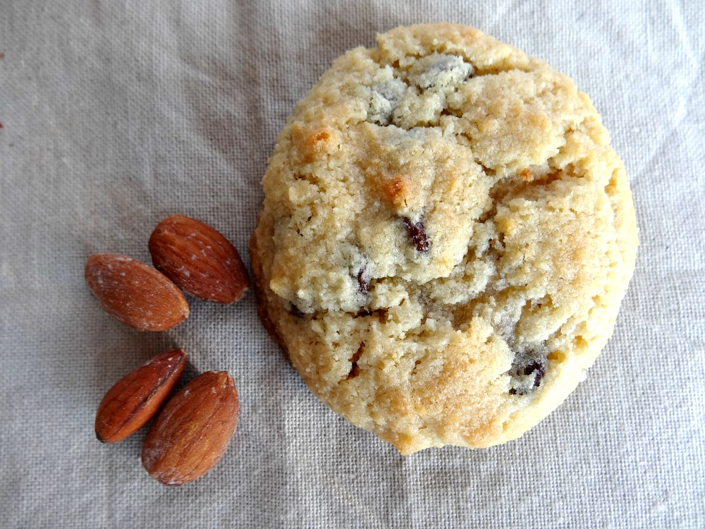 Gluten Free Monk Fruit Cookie Made With Almond Flour