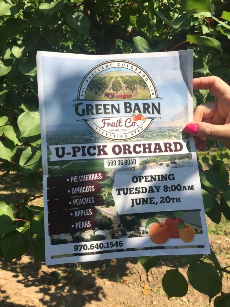 Green Barn Fruit U-Pick Orchard