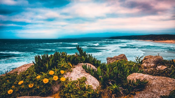 beautiful scenic seaside landscape