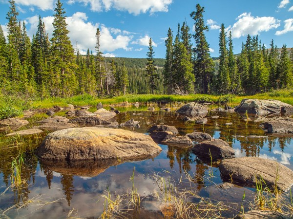 lake water rocks and trees landscape
