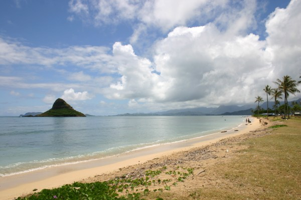 hawaii sky water and beach landscape