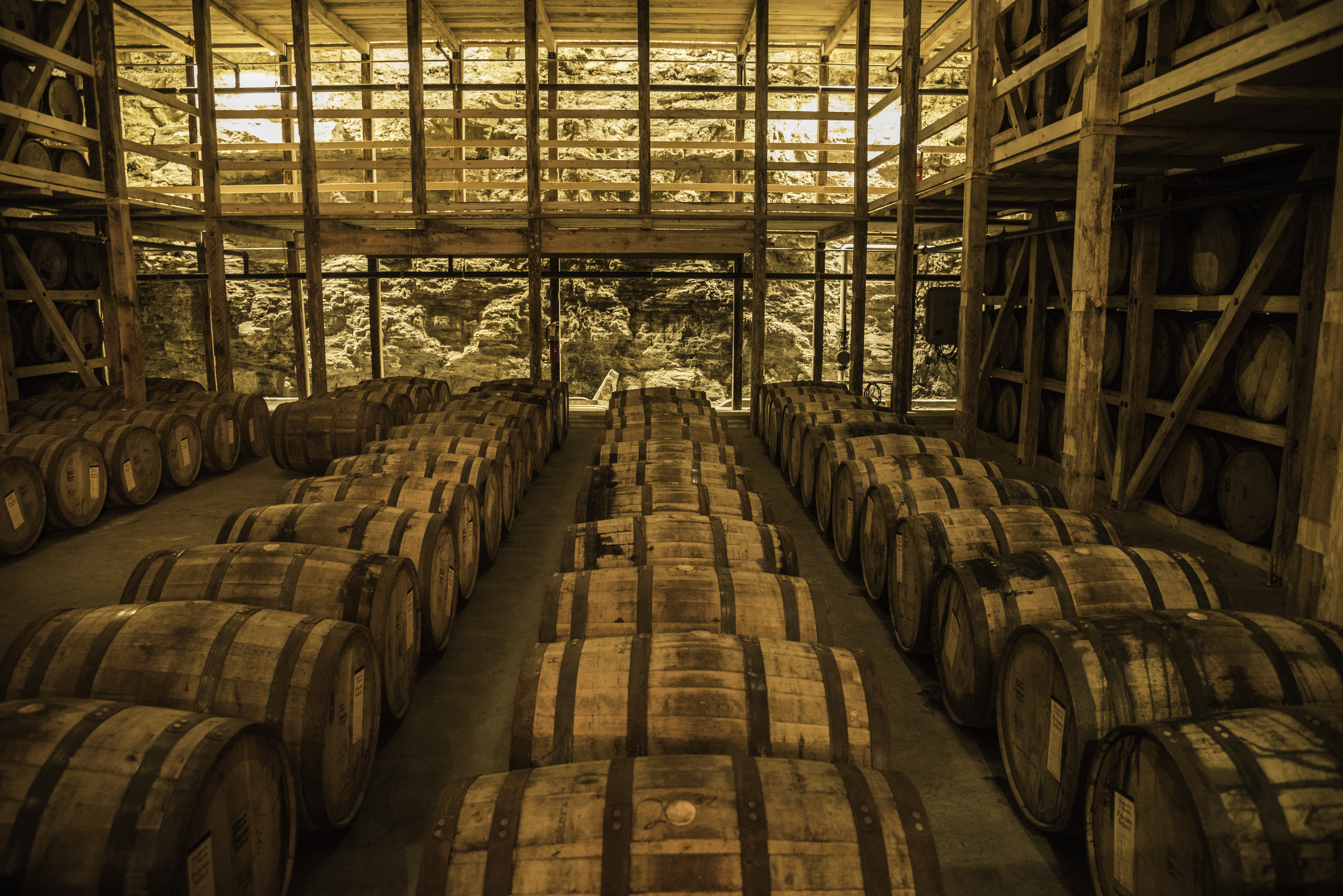 Barrels of Whiskey in the storage Room image  Free stock