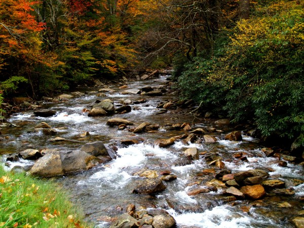 Streams And Landscape In Great Smoky Mountains National Park Tennessee - Free Stock
