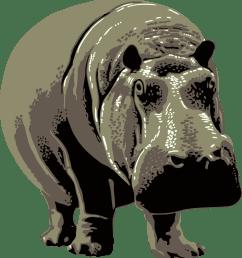free photos vector images gray standing hippopotamus vector clipart  [ 2212 x 2400 Pixel ]