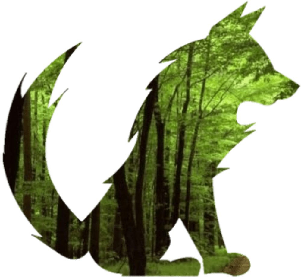 medium resolution of free photos vector images green forest fox vector clipart