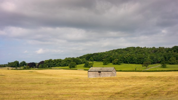 house and farm landscape