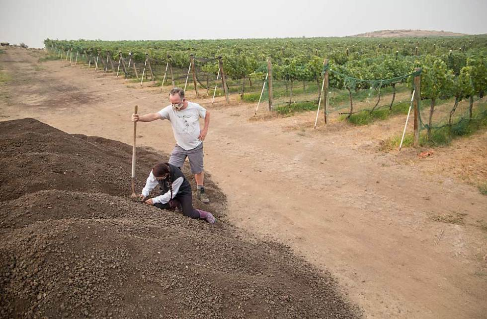 "A little goes a long way as Lenora Thelen, assistant winemaker for Wilridge Winery, and Paul Beveridge, Wilridge owner and winemaker, use 12 preparation treatments to ""activate"" a compost pile the size of an RV. (Ross Courtney/Good Fruit Grower)"