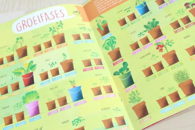 groeifases planten-GoodGirlsCompany-hoe maak je een moestuin