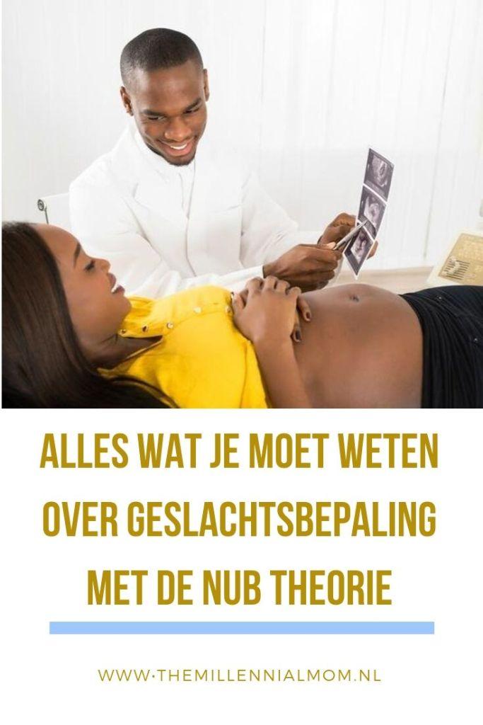 Nub theorie