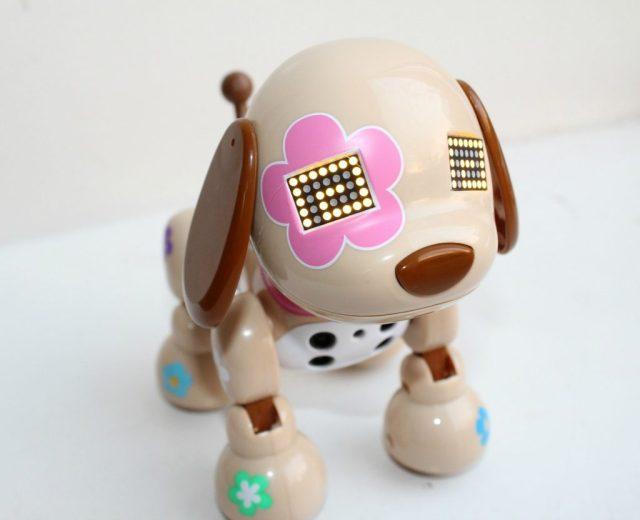 Review-puppy-Zoomer-Zuppies-Flora-GoodGirlsCompany