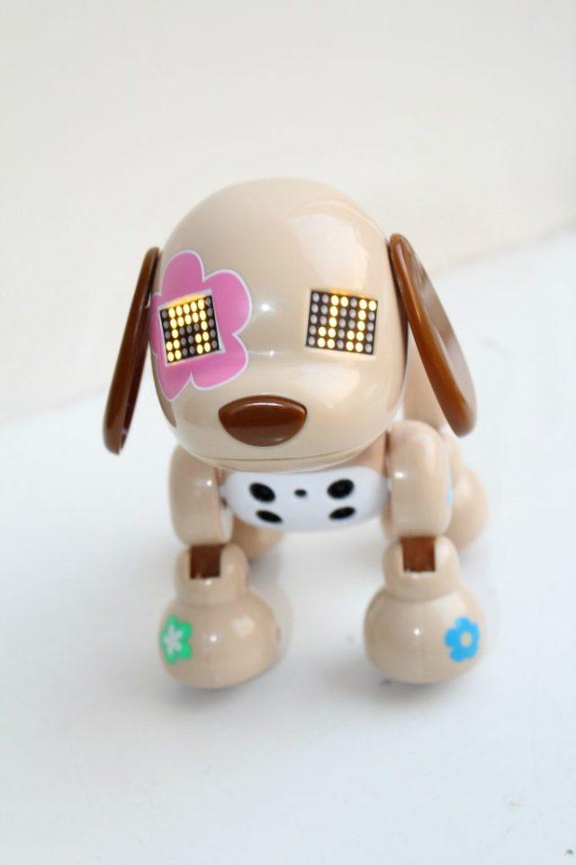Zoomer-Zuppies-puppy-Flora-GoodGirlsCompany