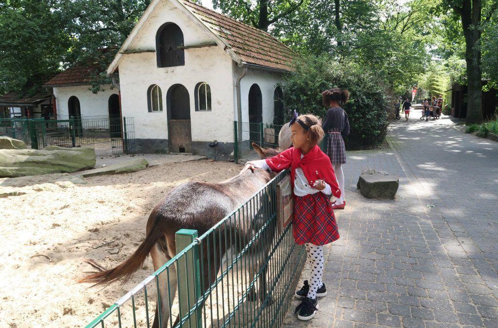 Tierpark-Nordhorn-kinderboerderij-GoodGirlsCompany