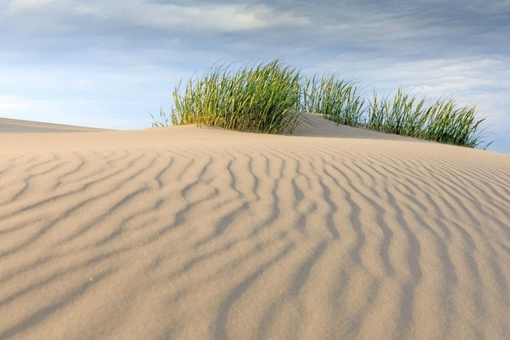 Råbjerg Mile, de wandelende zandduin-GoodGirlsCompany