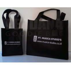 goodiebag musica studio
