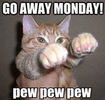 Funny Monday Instagram Captions