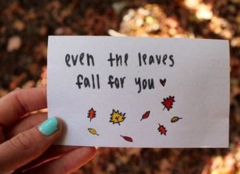 Cute Fall Instagram Quotes