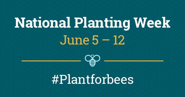 BeesMatter National Planting Week logo