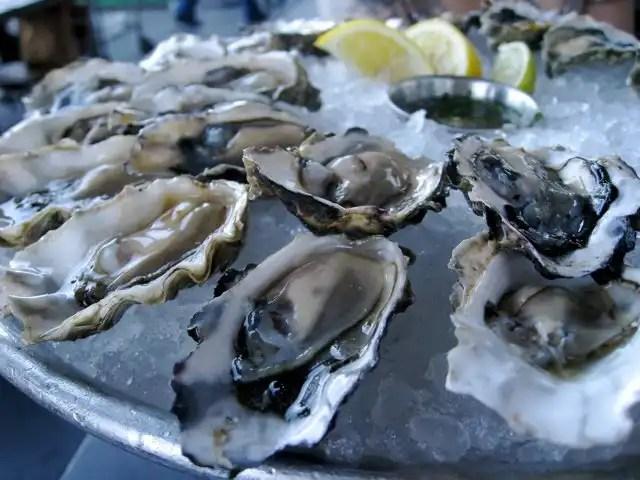 Hog Island Oyster Co  Serving Up Natural Gems of the