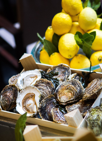 OYSTERS OF THE WORLD