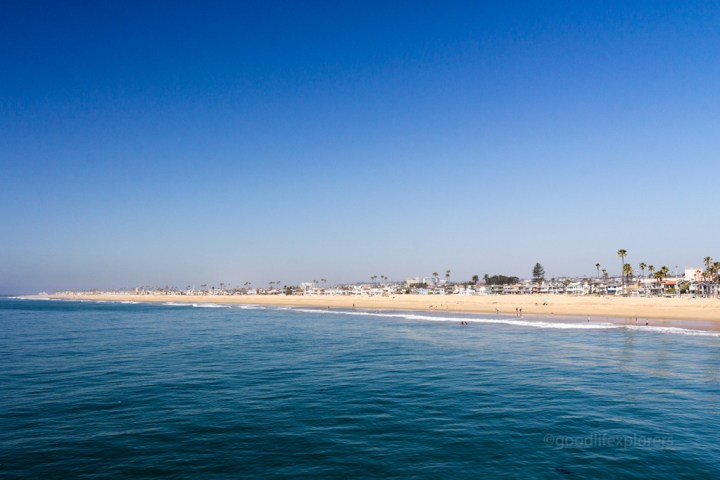 California; Newport Beach; Whale Watching, beach, dolphins; travel; travel expert; adventure travel; solo female travel; couple travel; vacation; tourism; adventure; World Travel; tips; advice; How to; adventure travel