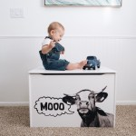 Little Colorado, toy box, collaboration, denver, colorado, blogger, kickstarter, ad, sponsored