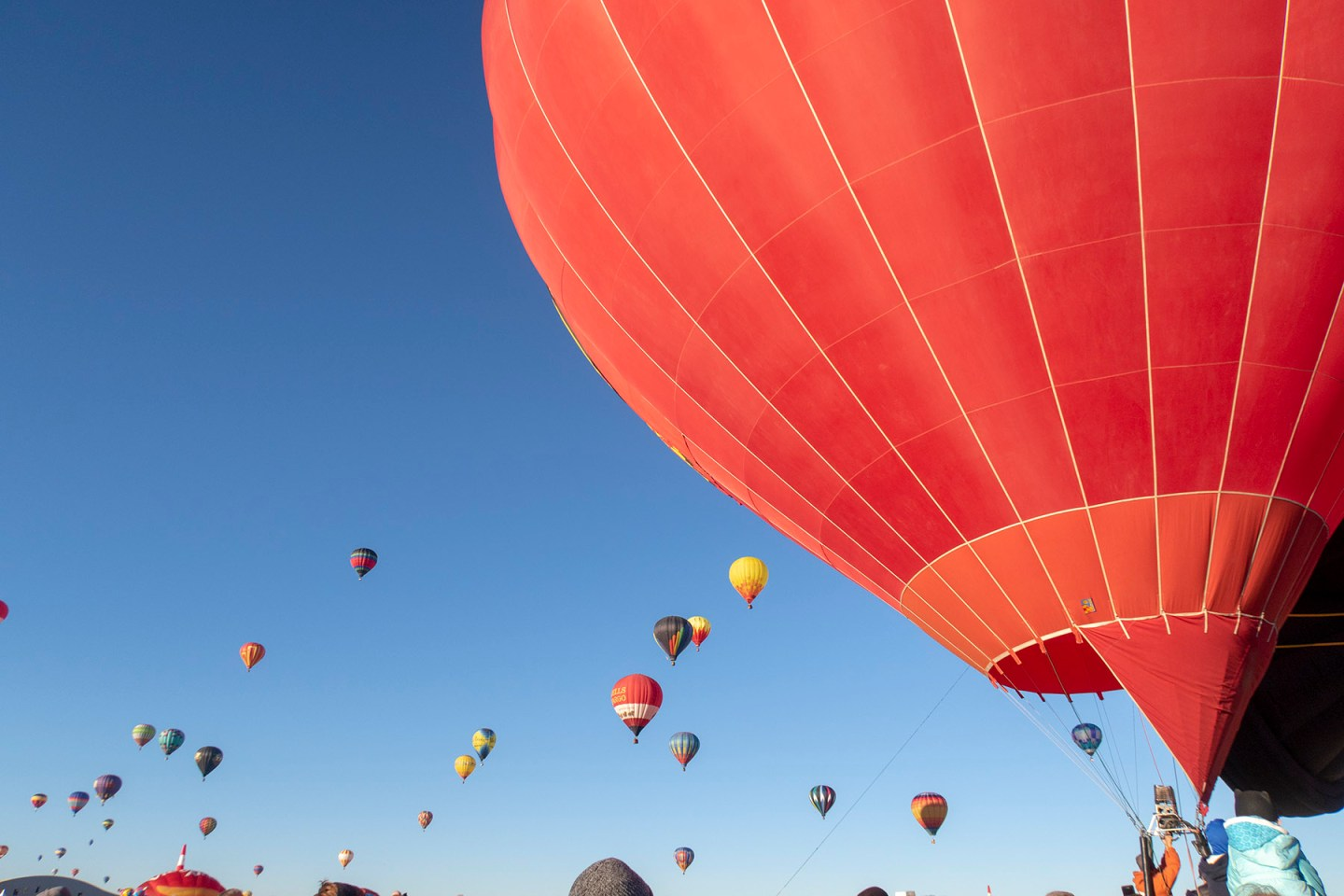 Mass Ascension of hot air balloons in Albuquerque New Mexico