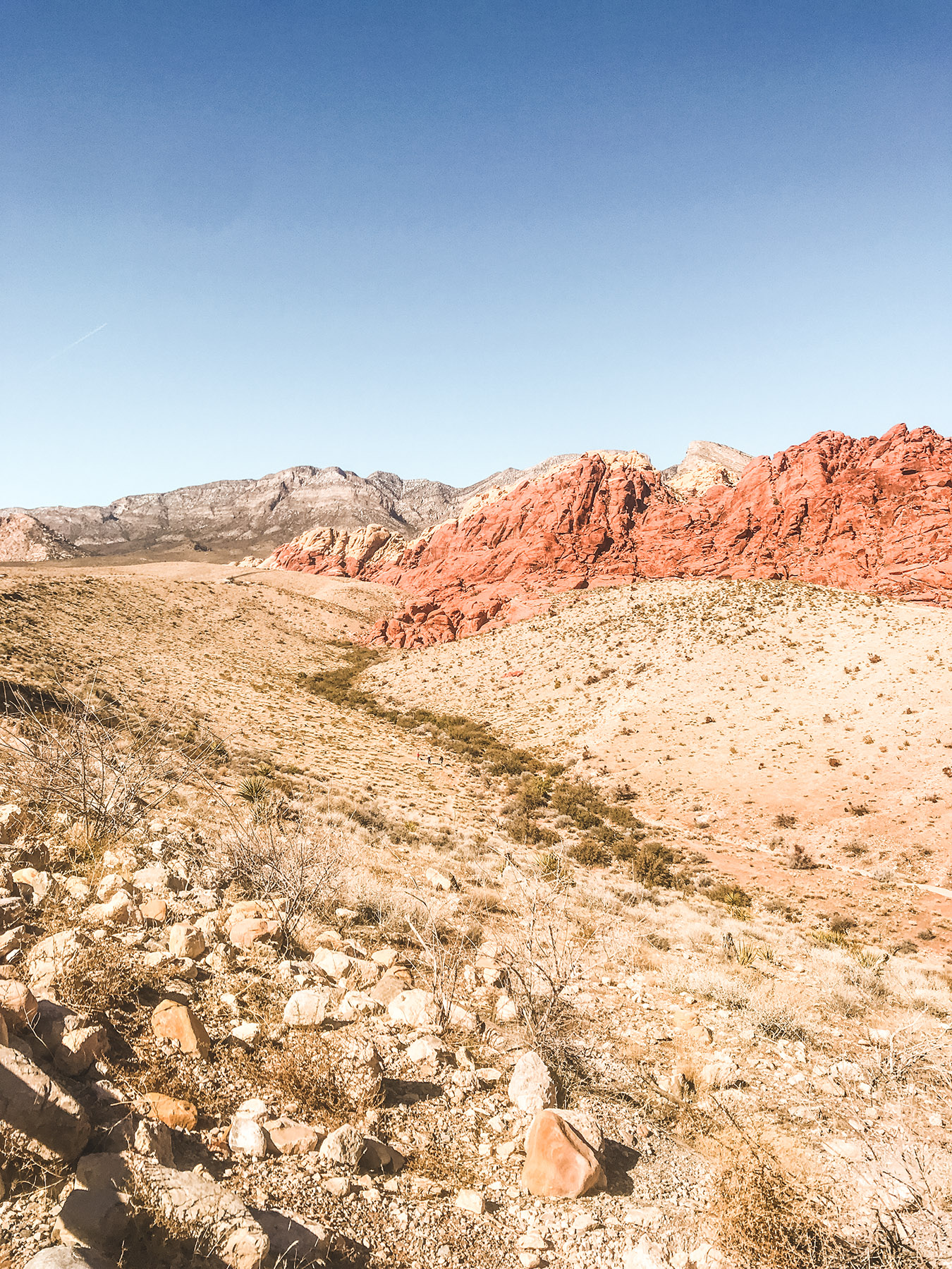 Canyon at Red Rocks in Nevada