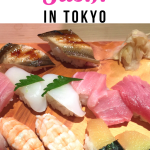 sashimi in Tokyo, Japan