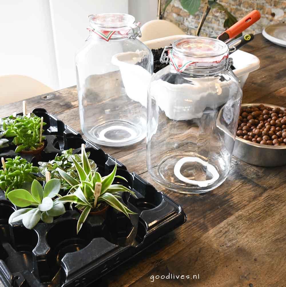 Ecosysteem moederdag DIY - de benodigdheden