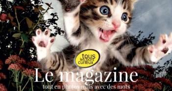 PDJ 20 décembre : Tous les jours curieux, des photos et des mots