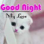 Good Night Images Download 3