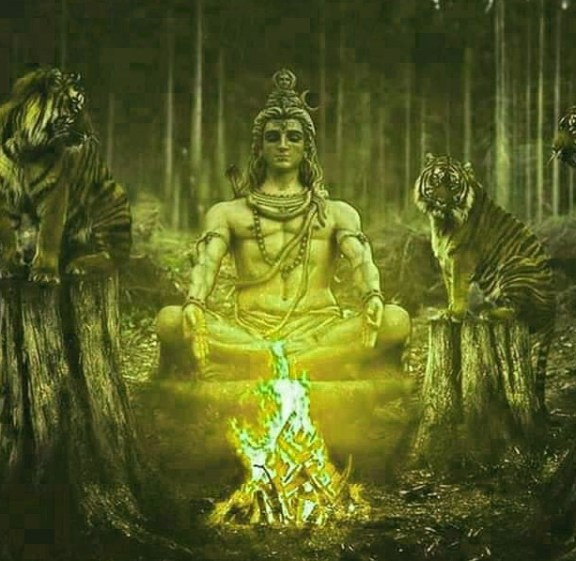 Shiva God Whatsapp DP Profile Images Pics pictures Download
