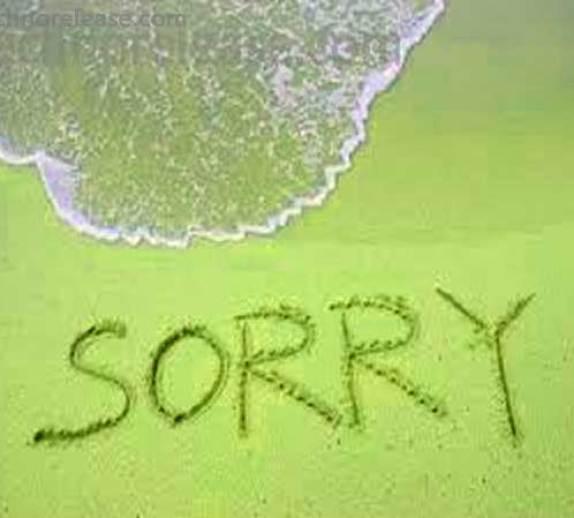 Sorry Whatsapp Dp Photo Pics