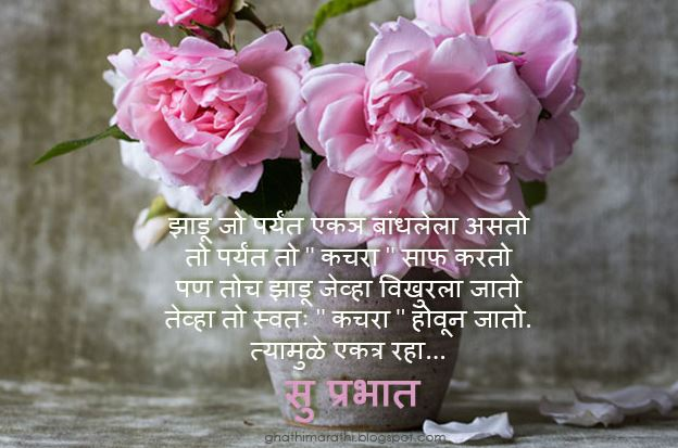 Hindi Shayari Wallpaper Girl Best And Top Good Morning Images In Marathi Wishes Pics