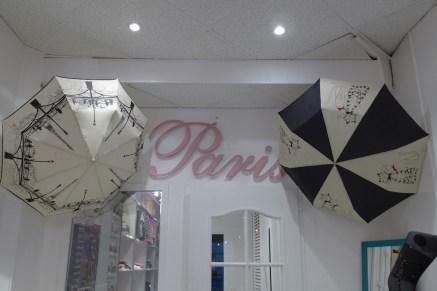passion france_it is raining in paris